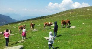 Rasciesa ad Ortisei in Val Gardena