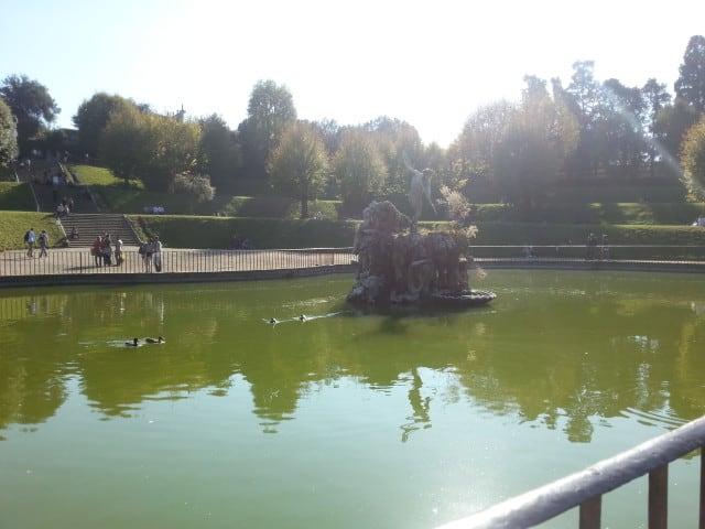Parchi di Firenze per bambini: anatre al Giardino di Boboli