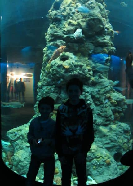 Acquario di Genova con bambini