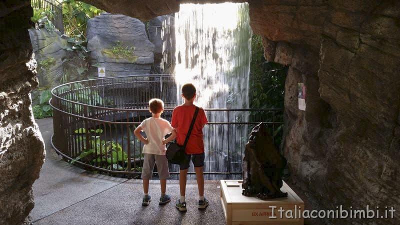 Muse di Trento- serra tropicale