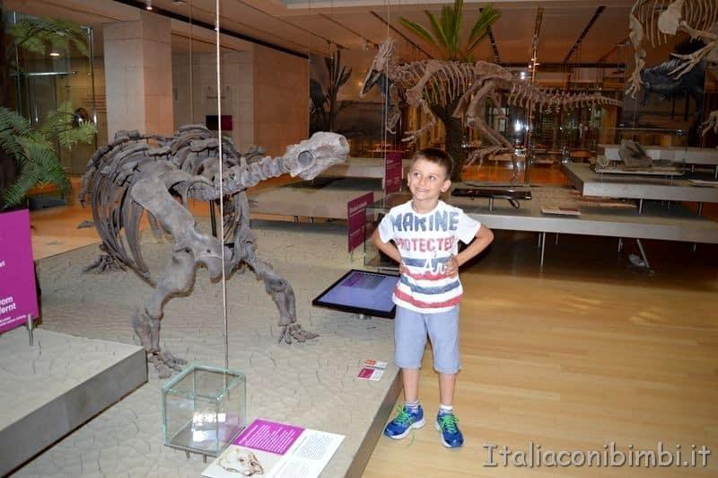 dinosauri al Muse di Trento