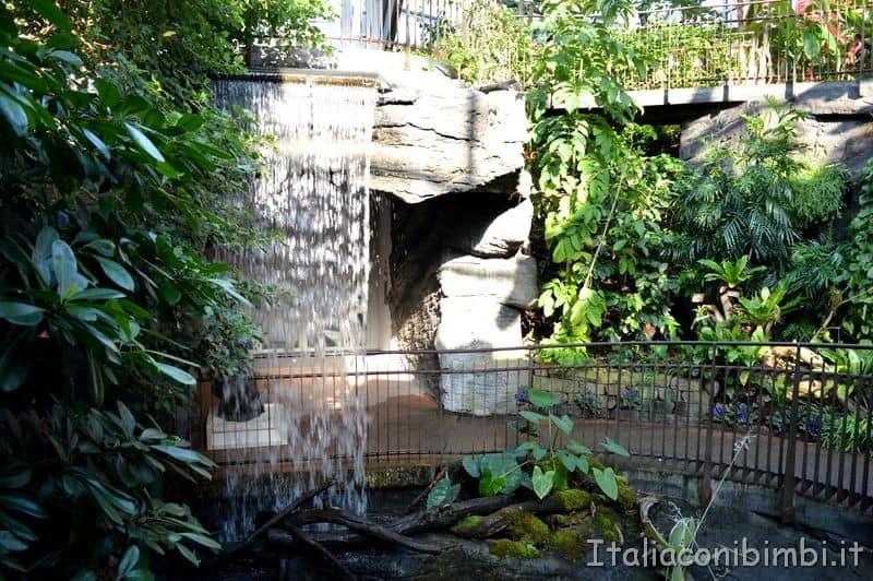 serra tropicale del Muse di Trento
