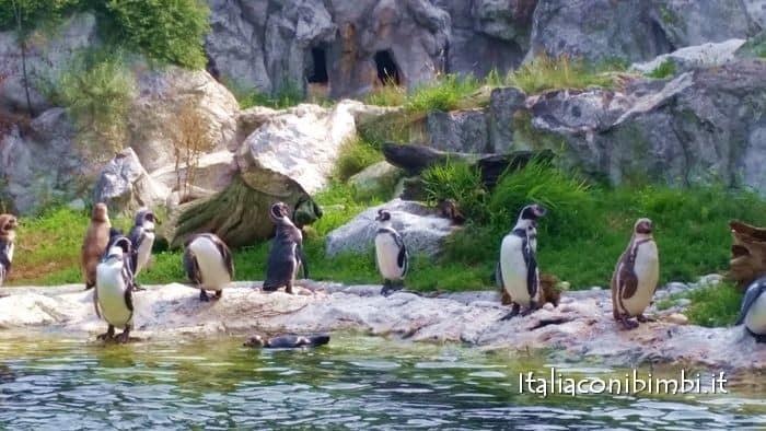 zoo di vienna