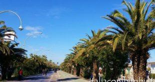 San Benedetto del Tronto La Riviera delle Palme pista ciclabile