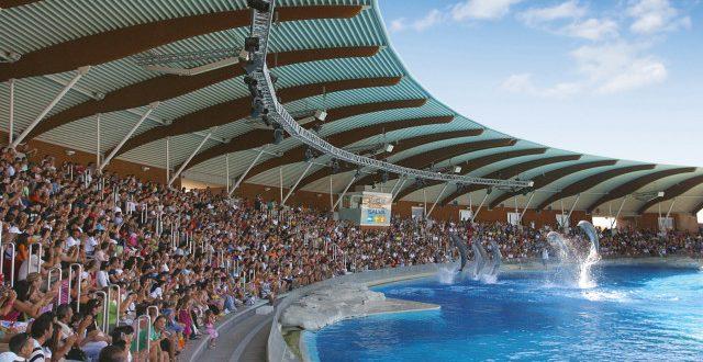 Oltremare: la laguna dei delfini