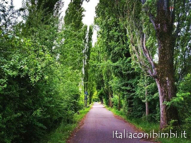 Pista ciclabile Peschiera Mantova vegetazione