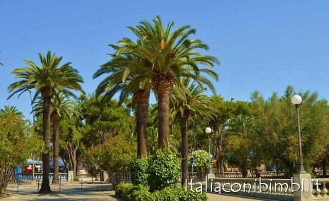Palme a San Benedetto del Tronto