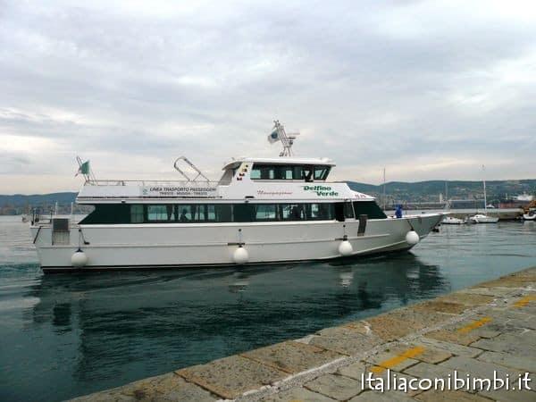 Delfino Verde di Trieste