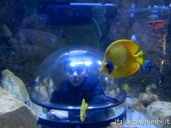 acquario a Legoland