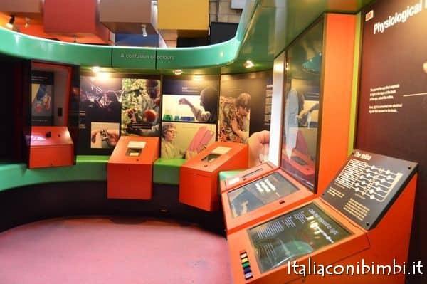 corpo umano al museo di storia naturale di Londra