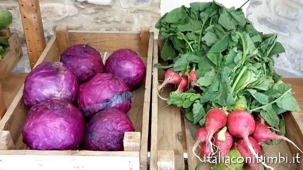 ortaggi al Lobrico Felice