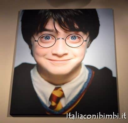 Quadro di Harry Potter