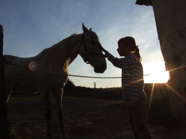 bambina con cavallo all'agriturismo Ca de Figo