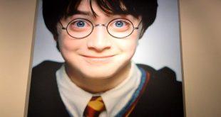 quadro ingresso Harry Potter Studios Londra