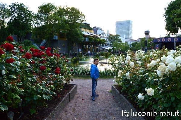 rose nei giardini di Tivoli di Copenaghen