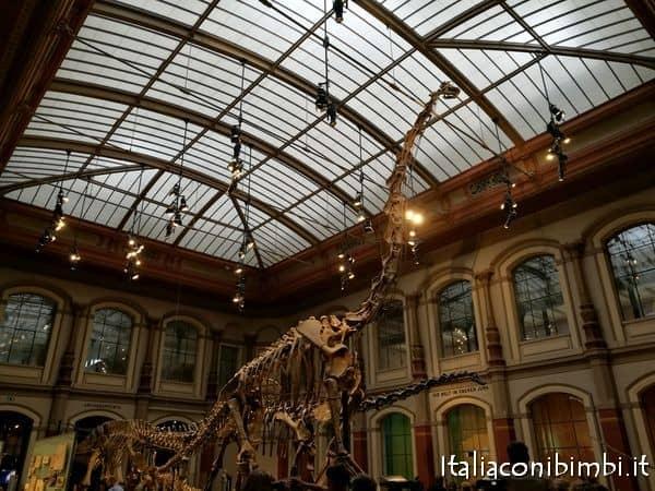 Museo-di-storia-naturale-a-Berlino