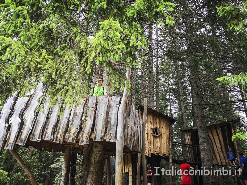 Panaraida-casetta-sull-albero-bimbi