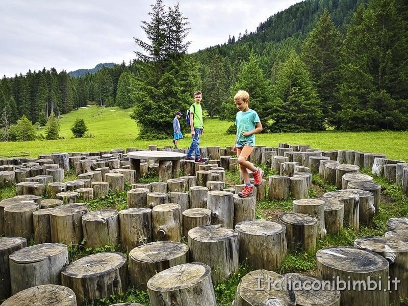 Panaraida- percorso con i tronchi