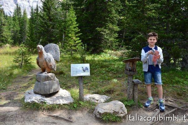 Caccia al tesoro delle orme degli animali al Summer Park La Crusc in Val Badia