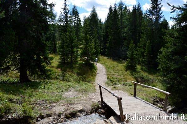 passeggiata nel bosco in Val Badia