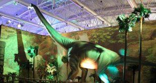 mostra dinosauri guido reni district Roma