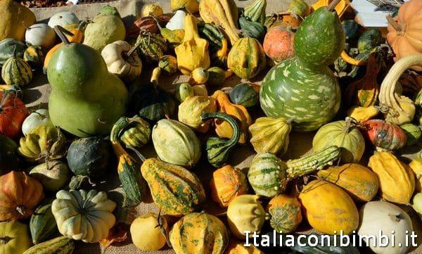 zucche alla sagra delle castagne di Marradi