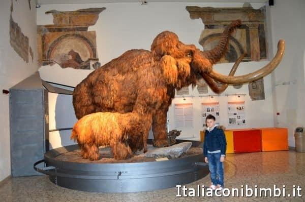 mammuth al museo di scienze naturali di Bergamo