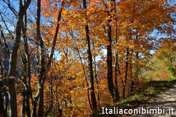 sentiero dei camosci Bolognola