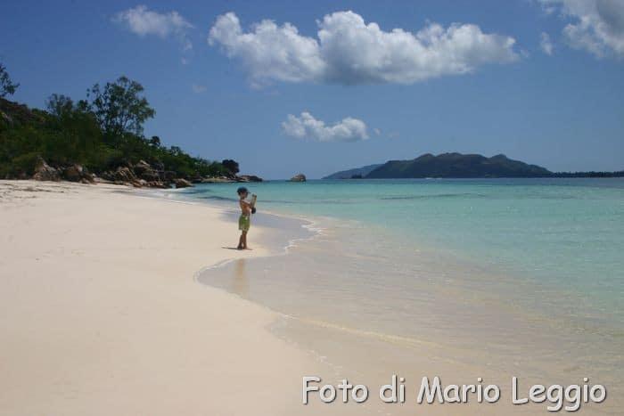 isola di Couriouse nell'arcipelago delle Seychelles