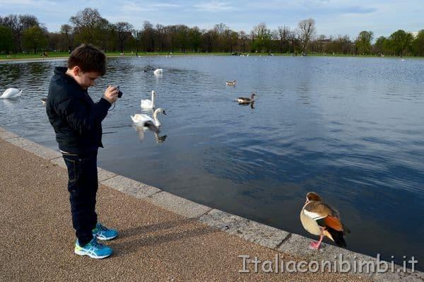 Fotografando a Kensington Gardens