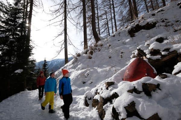 Montagna Animata e foresta dei Draghi Pg visitfiemme.it foto orlerimages.com_