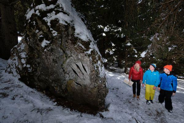 Montagna Animata e foresta dei Draghi Pg visitfiemme.it foto orlerimages.com