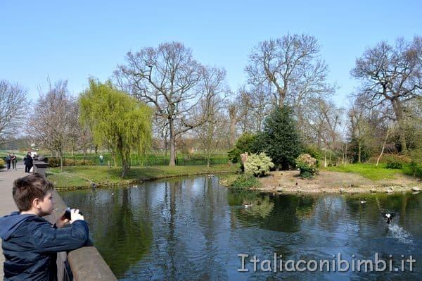 fotografando il laghetto al Regent' Park a Londra