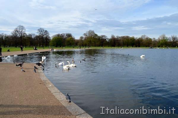 lago Kensington Gardens
