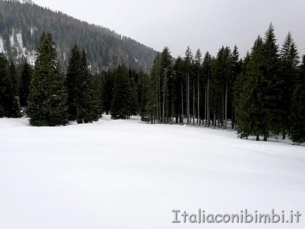 paesaggio innevato in Val di Fiemme