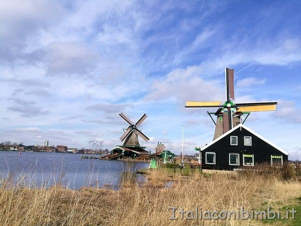 mulini a vento a Zaanse Schans