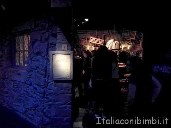 ingresso-alla-capanna-di-Hagrid