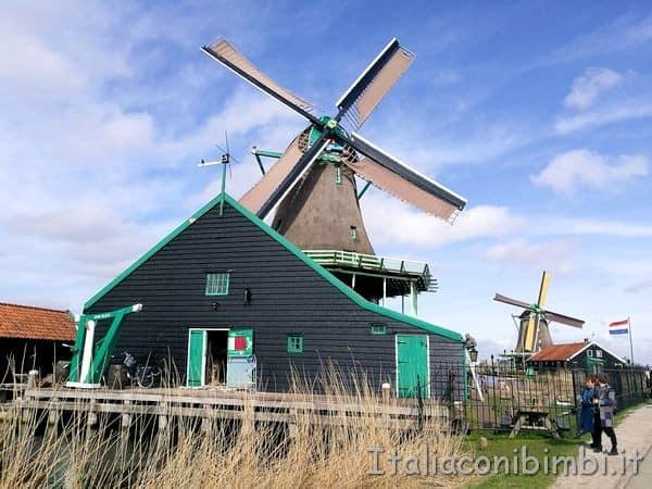 mulino a vento di Zaanse Schans