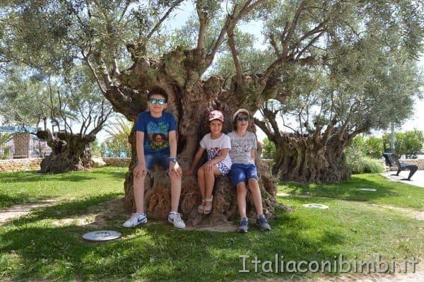 giardini tematici lungomare di San Benedetto del Tronto