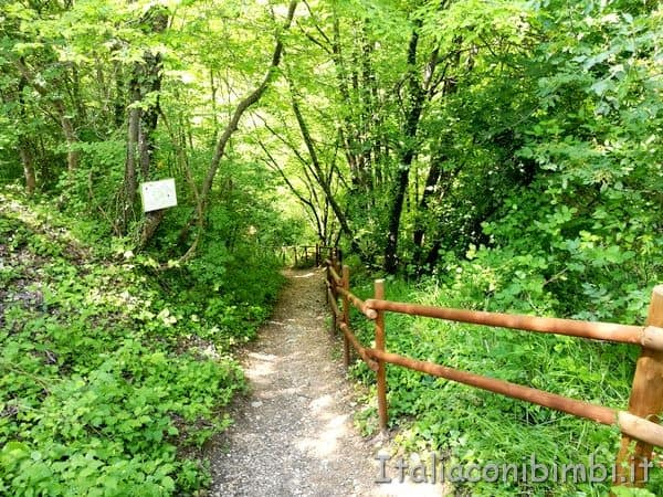 passeggiata-dentro-al-Bosco-dei-Folletti
