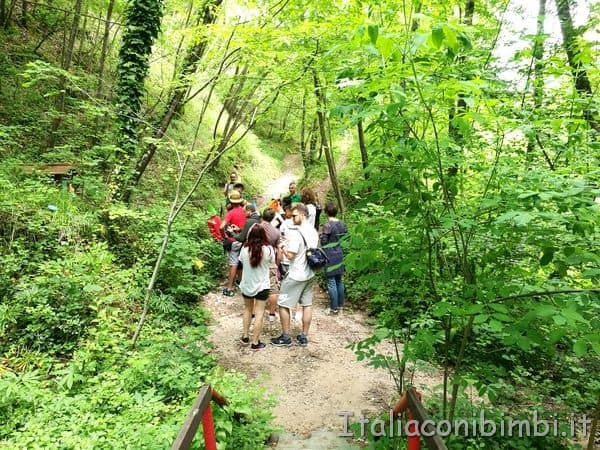 visita guidata Bosco dei Folletti