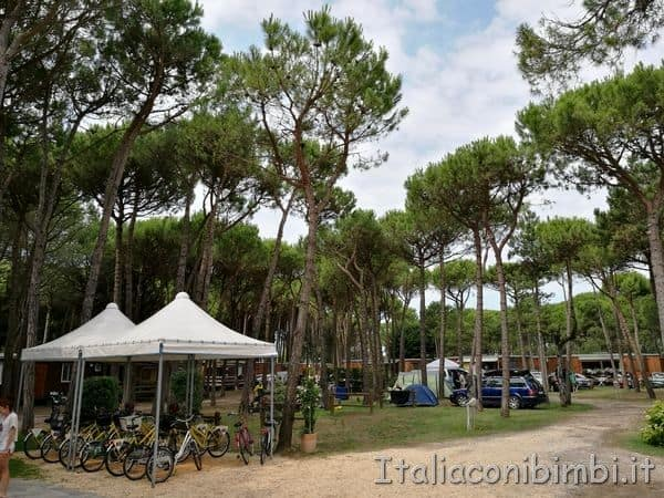 Camping Tridente