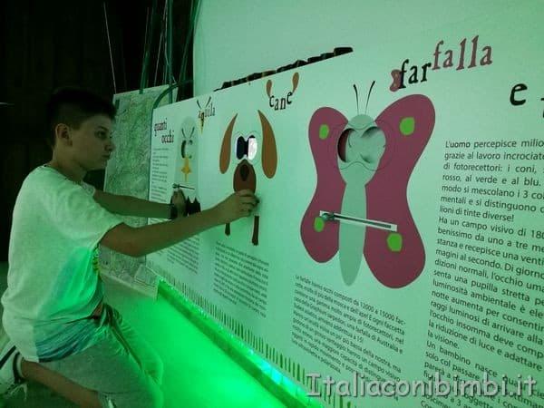Giardino delle farfalle di Cessapalombo giochi interattivi