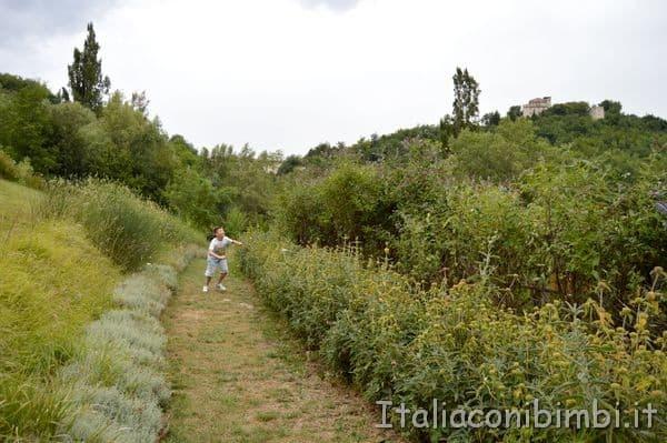 Giardino delle farfalle di Cessapalombo passeggiata