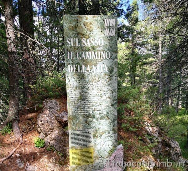 Sentiero-della-Foresta-dal-Ciampedie-a-Gardeccia