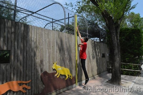 chi salta più in alto - zoo di Lignano