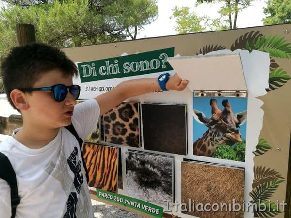 gioco al parco zoo Punta Verde di Lignano
