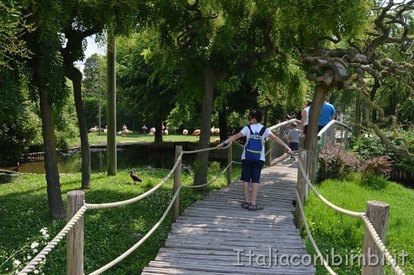 ponticello in legno nel parco zoo di Lignano
