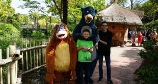 Disneyland Paris orso Baloo