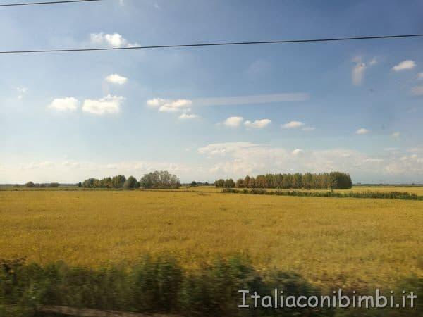vista dal finestrino treno TGV per Parigi